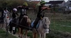 Total Saddle Fit Tuesday Video: Mini Archers