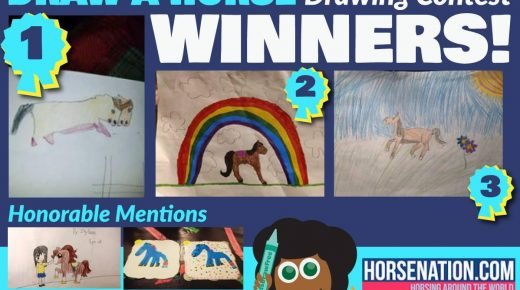Horse Nation & Kids Draw Free Present National Day of the Horse Drawing Contest Winners