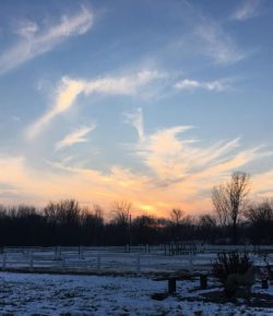Photo Challenge: 5 Winter Barnscapes