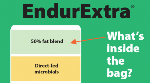 Kentucky Performance Products: What's Inside the Bag? EndurExtra