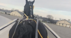One Last Ride With Foiled Again