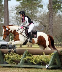 Lessons Learned: Our First USEA Recognized Novice