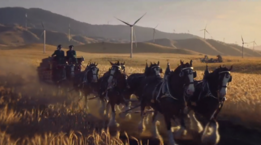 Stop What You're Doing Right Now & Watch: 2019 Budweiser Clydesdale Super Bowl Commercial Is Here
