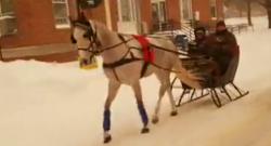 Thursday Video: One-Horse Open Sleigh