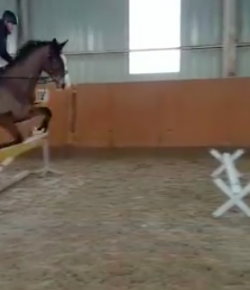 Best of JN: Jumping Is Hard