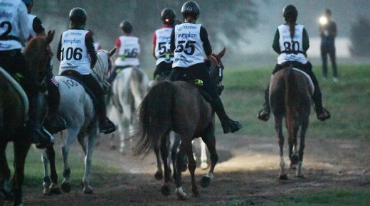 Equine Welfare, Rule Changes & More: Q&A With FEI Endurance Committee