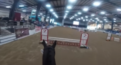 World Equestrian Brands HC: OTTBs for the Win!