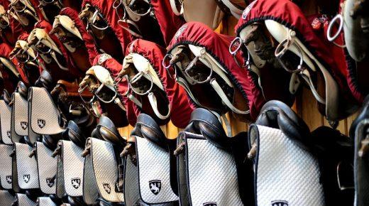 'Luxury Vegan Tack' & the Ethics of Leather