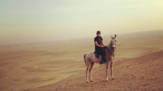Four-Star Care for Egypt's Horses, Part 6: The Long Road Home