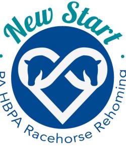 Standing Ovation by Ovation Riding: New Start