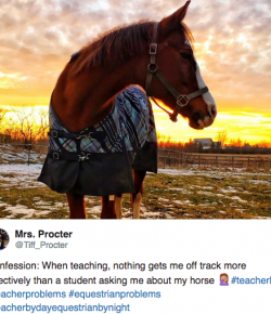 8 #EquestrianProblems According to Twitter