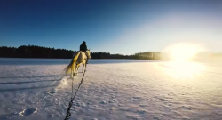 World Equestrian Brands Helmet Cam: Snowy Thrills