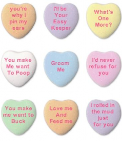 Candy Hearts From Your Horse