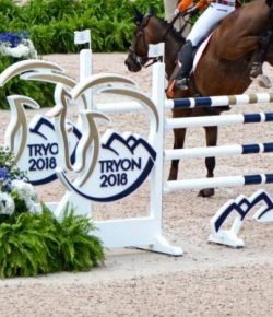 FEI Cites 'Very High' Interest in 2022 World Championships Bid Process