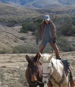 5 Truths About Riding Mules