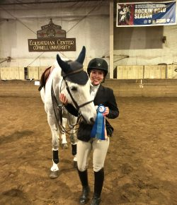 The Academic Equestrian: 7 (Hilarious) Takeaways From Crossover Riding
