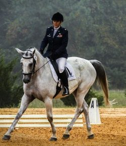 USDF Announces Regional Schooling Show Awards Program