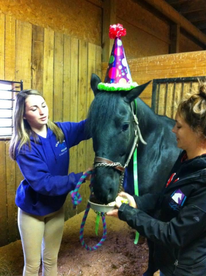 Danielle Keating My Horses First Birthday With Me I Was Away At School So Mom Made A Cake Sign And Horse Sized Part Hat Had The Girls Barn