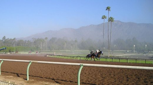 Santa Anita Closes Indefinitely After Deaths of 21 Horses