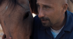 Horses in Movies: 'The Mustang'