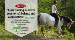 Kentucky Performance Products: Cross-Training