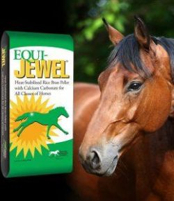 Kentucky Performance Products: Why Choose Equi-Jewel?