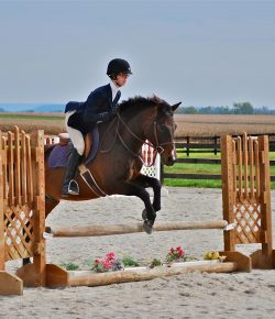 The Academic Equestrian: 10 Questions to Ask When Visiting Colleges
