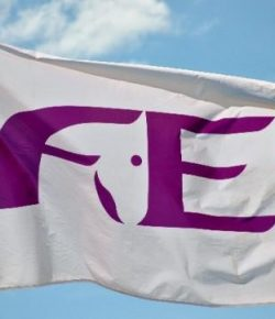 20 Countries Expressing Interest to Host 2022 FEI World Championships