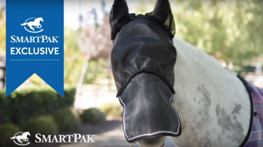 Monday PM Feed From SmartPak: Fly Mask Shopping