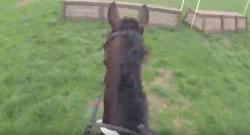 World Equestrian Brands Helmet Cam: A Bit Keen