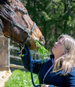 Happy, Healthy, & Horsey: Symbiosis