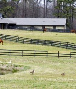 Kentucky Performance Products: Why Turnout Is Important