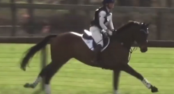 Total Saddle Fit Tuesday Video: Stirrup-Free XC