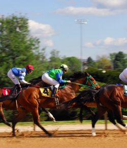 NTRA To Give $100,000 to University of Kentucky Equine Surfaces & Safety Research Lab