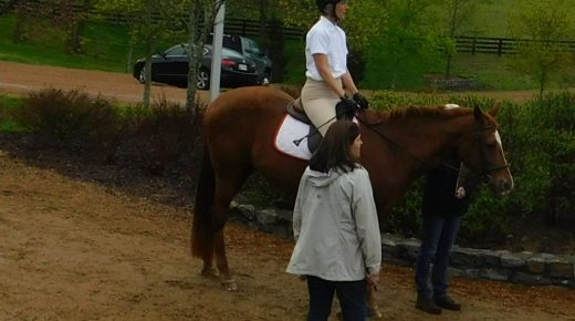 My First Dressage Competition: Blue Ribbon Wisdom
