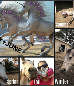 The New Equine Weather Report: Exclusively for Horses & Their Humans
