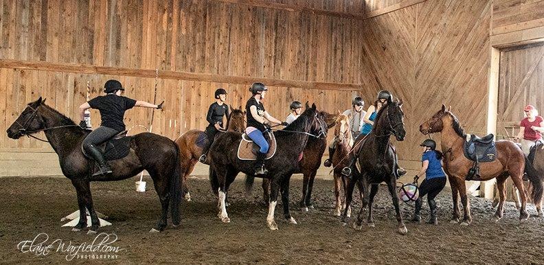 quidditch horse ball