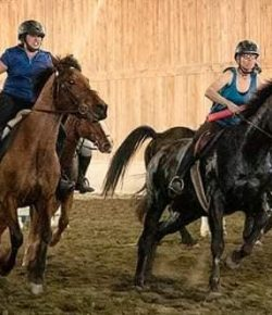 Extreme Equestrians: The Quidditch Games
