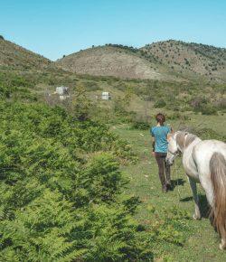 Trekking the Trans-Albanian Trail: Our Albanian Unicorns