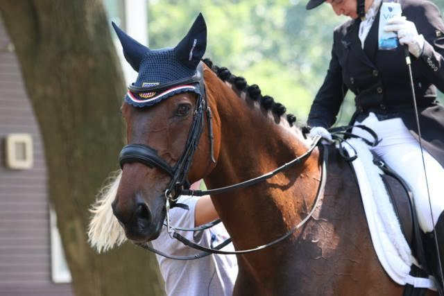 aea0157b3 Kristen Kovatch | Eventing Nation - Three-Day Eventing News, Results ...
