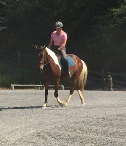 Happy, Healthy, & Horsey: Speaking of Bend…