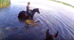 World Equestrian Brands Helmet Cam: Baby It's Hot Outside