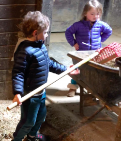 6 Ways to Keep Kids Busy at the Barn (Other Than Riding)