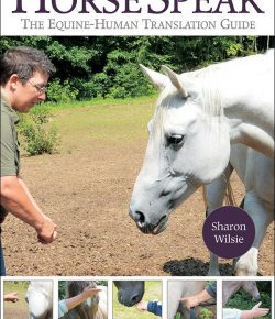 "Video Review: ""Horse Speak: The Equine-Human Translation Guide"" by Sharon Wilsie"