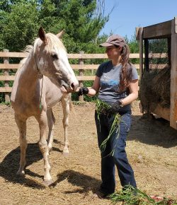 Horsemanship with Lindsey Partridge: New Mustangs and Bulldozing Challenges