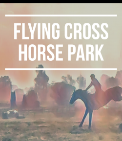 Grassroots, Public Access And A Venue For All: Flying Cross Horse Park
