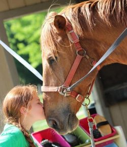 Time to Ride: Introducing Children to the Love of Horses