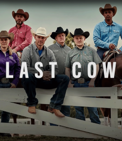"""""""The Last Cowboy"""" from Taylor Sheridan Premieres Wednesday, July 24 on Paramount Network"""