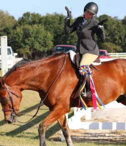 Photo Challenge: 15 Horses and Their Ribbons