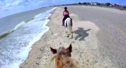 World Equestrian Brands Helmet Cam: Exhilarating Ride at Pakefield Beach